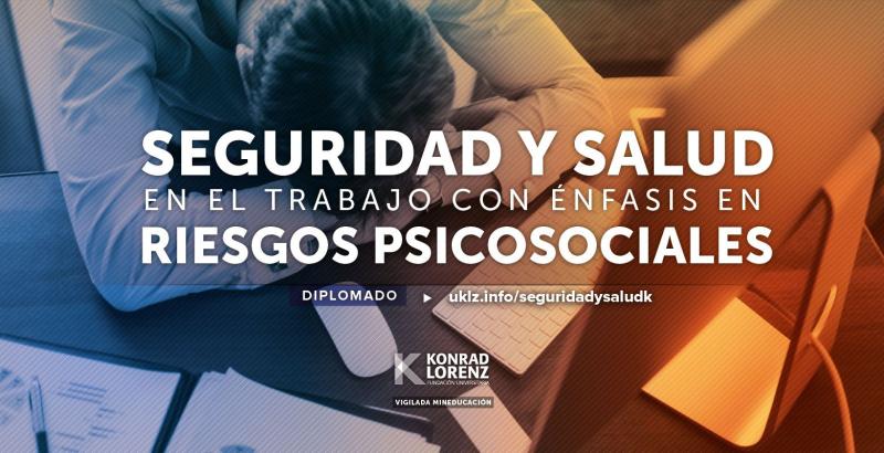 Diplomado en Seguridad y Salud en el Trabajo con Énfasis en Riesgos Psicosociales