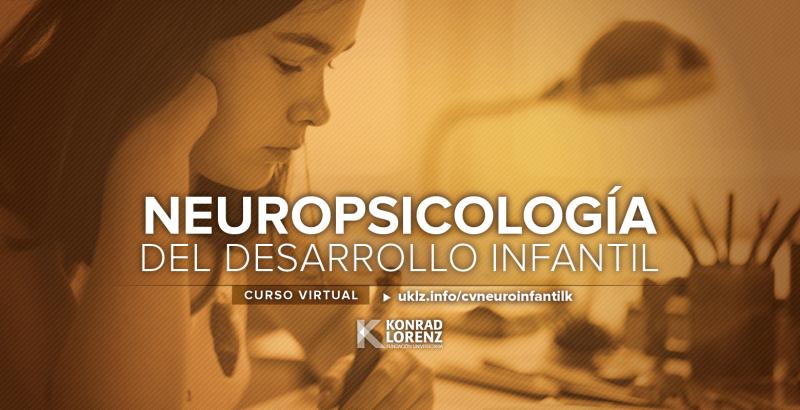 Próxima versión del Curso Virtual de Neuropsicología del Desarrollo Infantil