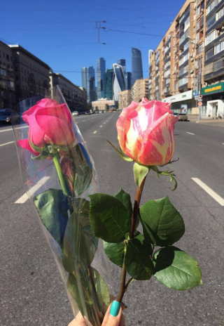 Roses in Moscow