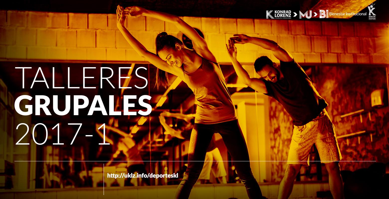 Talleres Grupales 2017-1