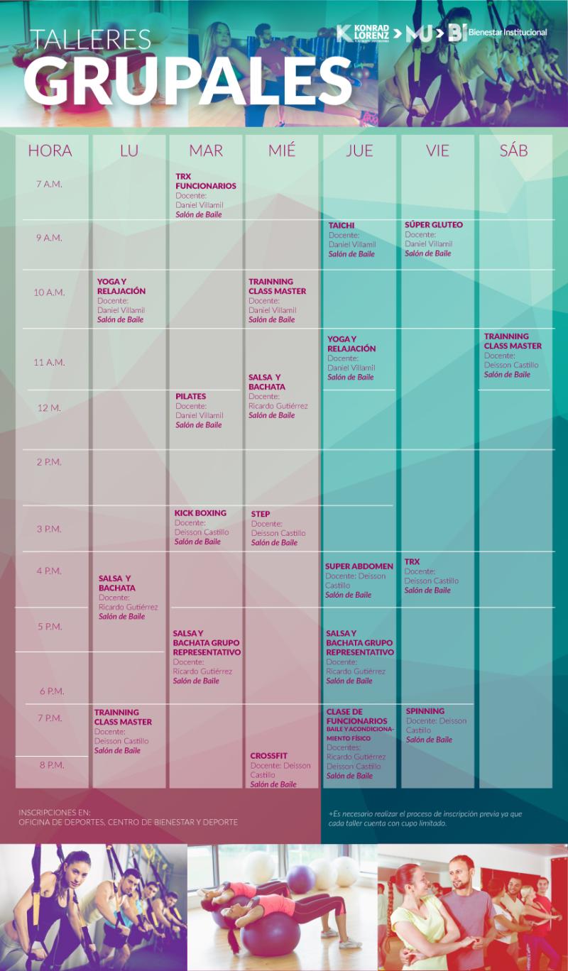 2017_07_27_talleres_grupales_cronograma
