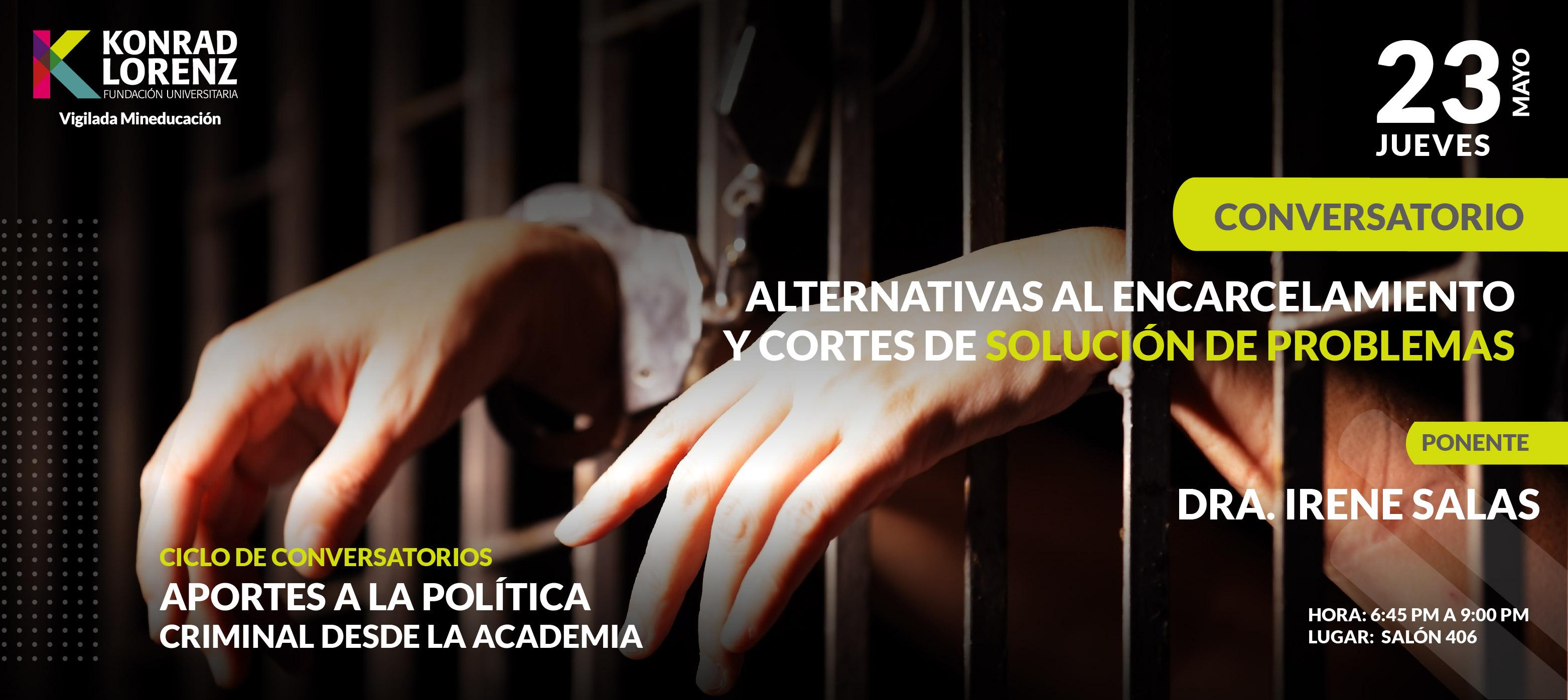 Alternativas al encarcelamiento y Cortes de Solución de Problemas | Cuarto conversatorio