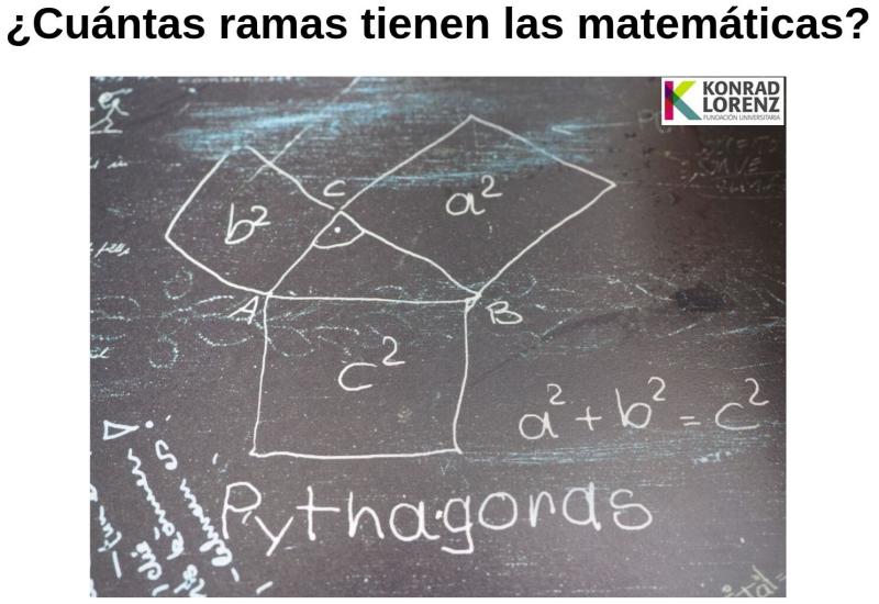 ¿Cuántas ramas tienen las matemáticas_