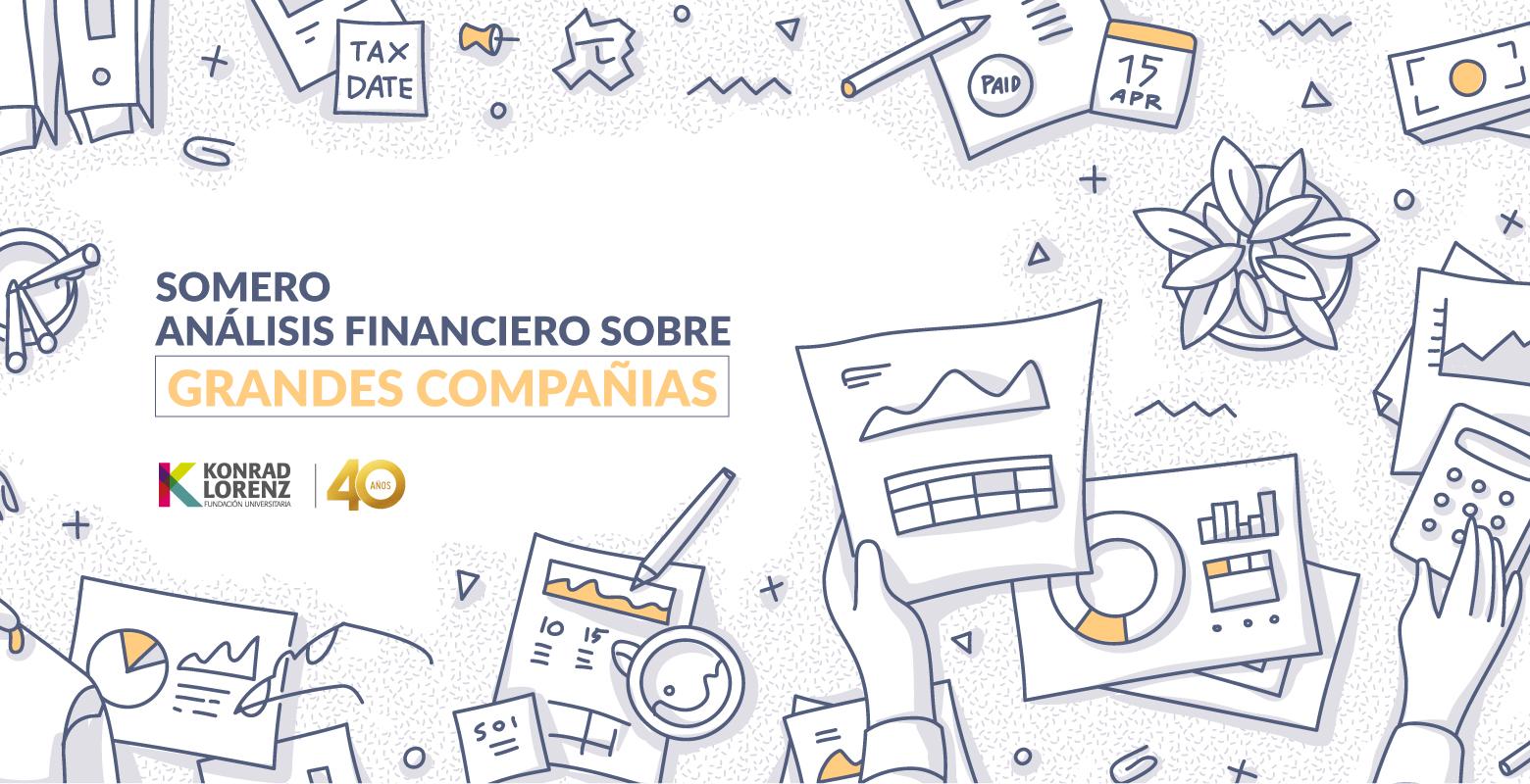 Somero análisis financiero sobre grandes compañías