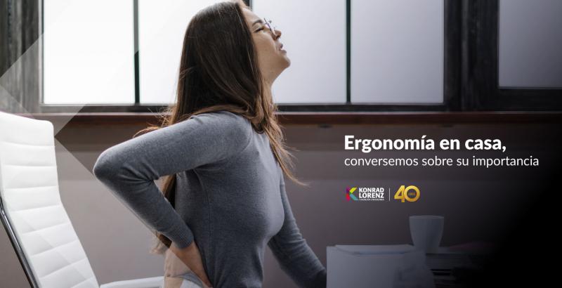 Ergonomia-en-casa-konrad-lorenz